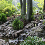 About Metrowest Water Gardens